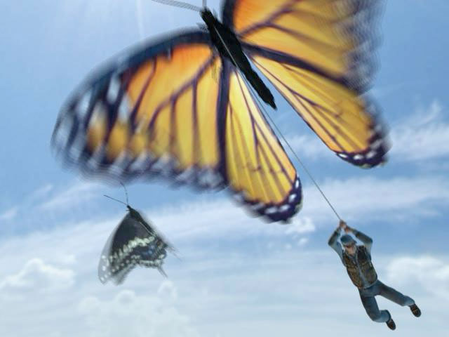 Escape by butterfly